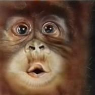 Le 3 Scimmie
